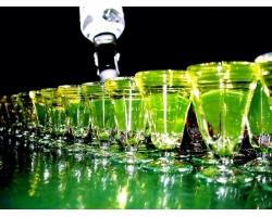 Абсент: с чего все начиналось, как правильно приготовить и пить