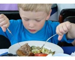 Мясо в детском питании