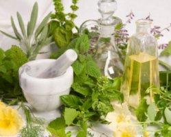 Растительные экстракты в натуральной косметике