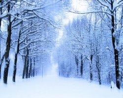 Какая будет зима 2014-2015, прогнозы погоды