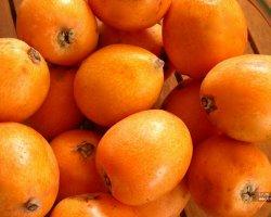 Мушмула – экзотическое витаминное чудо