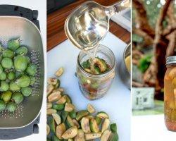 Заготовки из фейхоа на зиму, лучшие рецепты с фото