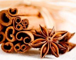 Корица с медом для похудения: рецепты для диеты