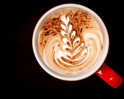 Разнообразие вкусов и ароматов в кофе Melitta®
