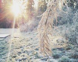 10 поводов улыбнуться зиме