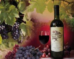 Солнце в бокале: самые лучшие вина Крымского полуострова