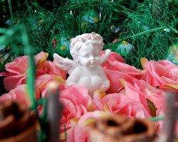 Сказочный сад: конфетно-цветочный букет своими руками