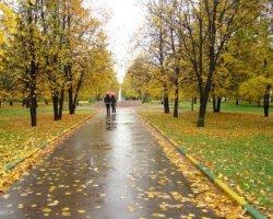 Дожди или заморозки: какая будет осень 2015