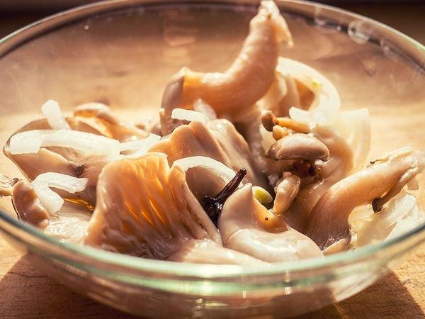 Как солить сыроежки холодным и горячим способом 12 рецептов приготовления с фото