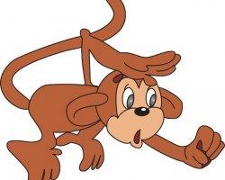 Год какого животного 2016: активная и перспективная Огненная обезьяна