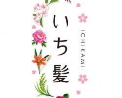 ICHIKAMI - красота от природы