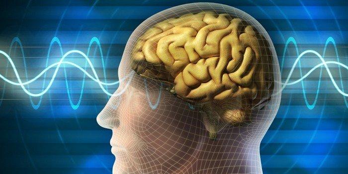 Как заставить мозг работать эффективнее