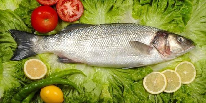 Когда можно есть рыбу и морепродукты в Великий пост