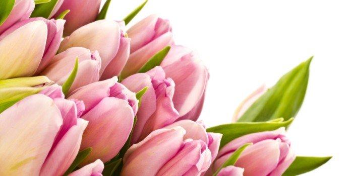 Весенние стихи на 8 марта для девочек, девушек и женщин