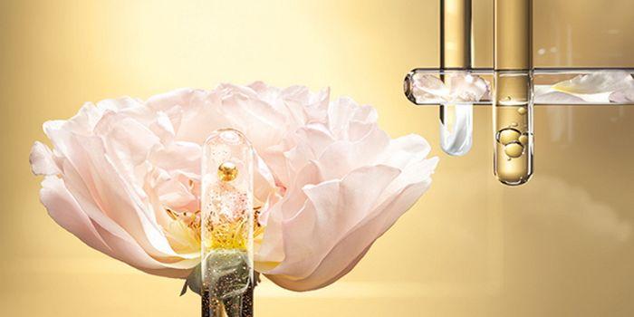 Медовая роза: крем и бальзам для губ Lancôme Absolue Precious Cells