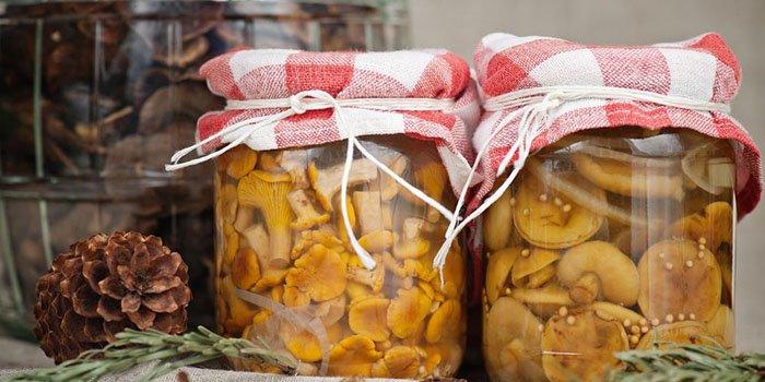 Рыжики на зиму — рецепты приготовления — маринованные, соленые (холодной и горячей засолки), заморозка. Икра из рыжиков для зимы в мультиварке