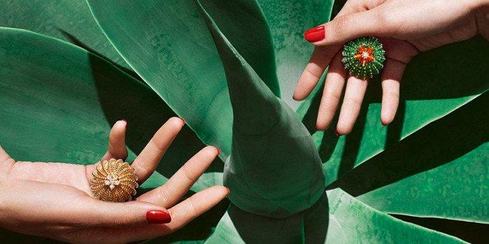 Тайна пустыни: экзотическая ювелирная серия Cactus de Cartier
