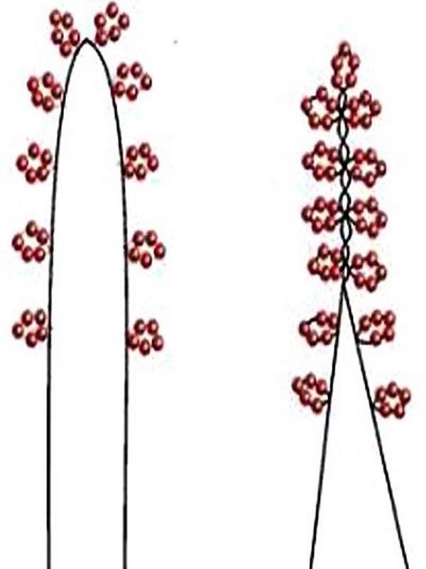 Пошаговая схема плетения из бисера фото 928