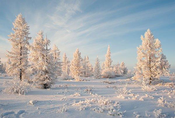 прогноз клева на декабрь