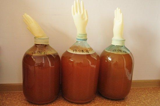 Как сделать вино из яблок рецепт фото 810