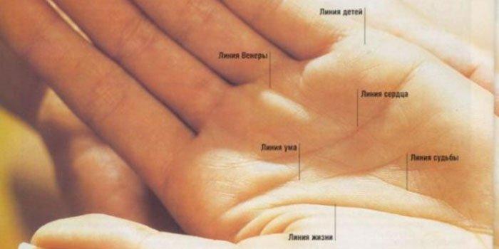 Линия жизни на руке: определяем, сколько лет человек будет жить