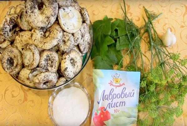 Как солить грибы на зиму в банках в домашних условиях: Простой рецепт засолки холодным и горячим способом грибов