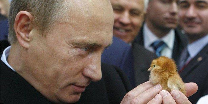 5 доказательств, что у Владимира Путина отношения с Алиной Кабаевой