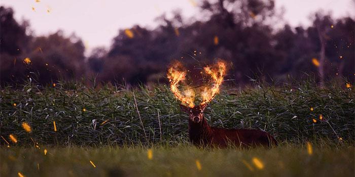 Как «палятся» знаки зодиака, изменяя своим половинкам
