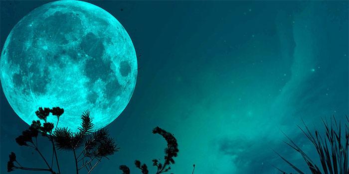 Лунный посевной календарь на май 2019 года для Подмосковья, Средней по