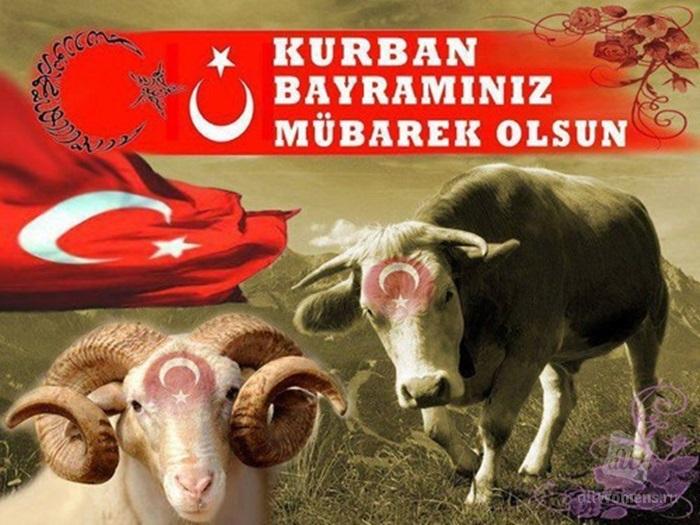 Картинки, открытки с курбан байрам на турецком языке