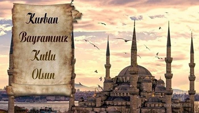 Открытка курбан байрам на турецком, рисунок легкий юмор