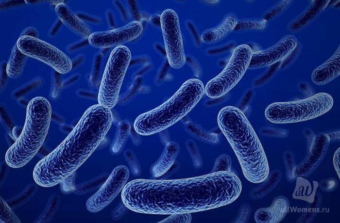 Ботулизм: бактерия