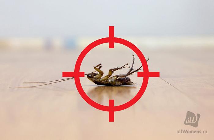 Топ-4 самых эффективных средств от тараканов