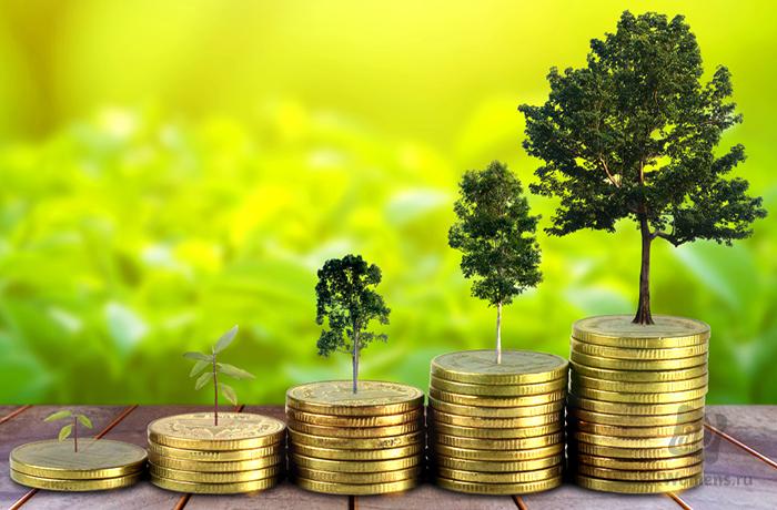 10 простых шагов на пути к богатству
